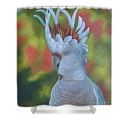 Original Animal Oil Painting Art -parrot #16-2-5-17 Shower Curtain by Hongtao     Huang