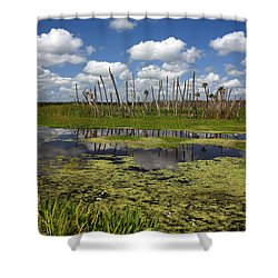 Orlando Wetlands Cloudscape 2 Shower Curtain by Mike Reid