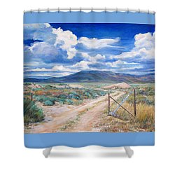 Osceola Nevada Ghost Town Shower Curtain