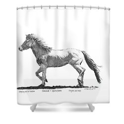 Oshunnah Stepping Out For Freedom Shower Curtain