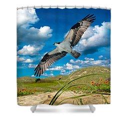 Osprey On Shackleford Banks Shower Curtain