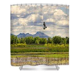 Osprey Over The Wetlands Shower Curtain