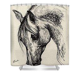 Ostragon Shower Curtain by Angel  Tarantella