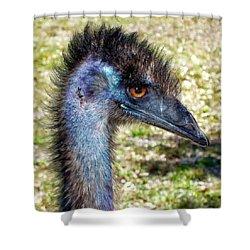 Shower Curtain featuring the photograph Ostrich 1 by Dawn Eshelman