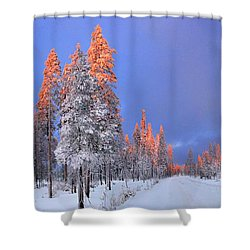 Other Side Of A Winter Sunset Shower Curtain by David Andersen