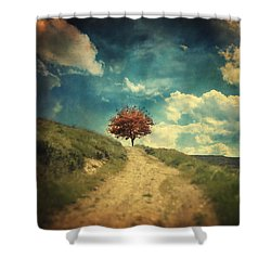 Other Stories Shower Curtain by Taylan Apukovska