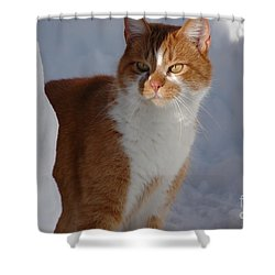 Shower Curtain featuring the photograph Otis by Christiane Hellner-OBrien
