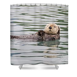 Otterly Adorable Shower Curtain