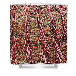 Ouch Shower Curtain by Bob Phillips