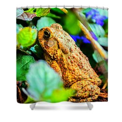 Our Backyard Visitor Shower Curtain by Jon Woodhams