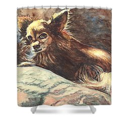 Chihuahua Angel Shower Curtain