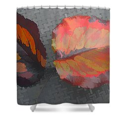 Our Maker's Palette Shower Curtain by Barbara McDevitt