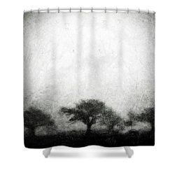 Our Moment In Patience Shower Curtain by Brett Pfister