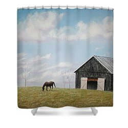 Out For Breakfast Shower Curtain by Stacy C Bottoms