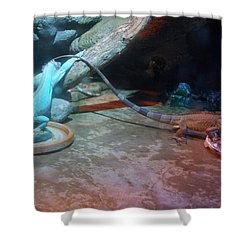 Out Of Africa Lizards Shower Curtain