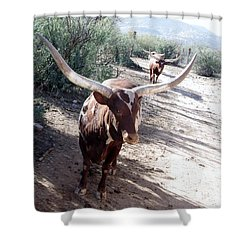 Out Of Africa  Long Horns Shower Curtain