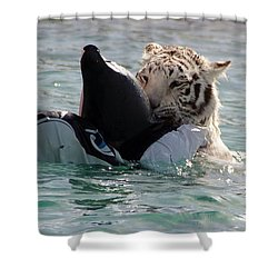 Out Of Africa Tiger Splash 4 Shower Curtain
