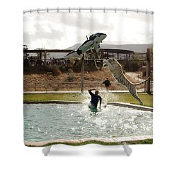 Out Of Africa  Tiger Splash 6 Shower Curtain