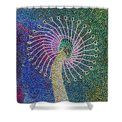 Shower Curtain featuring the photograph Out Of Control by Aimee L Maher Photography and Art Visit ALMGallerydotcom