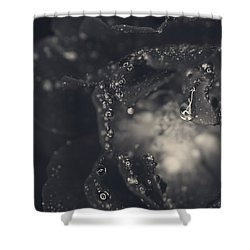 Out Of My Head Over You Shower Curtain by Laurie Search