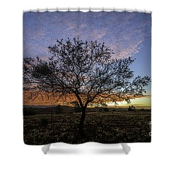 Outback Sunset  Shower Curtain by Ray Warren