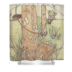Shower Curtain featuring the drawing Outdoors by Jason Girard