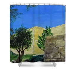 Shower Curtain featuring the painting Outside The Wall - Jerusalem by Linda Feinberg