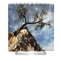 Shower Curtain featuring the photograph Hung Over by Natalie Ortiz