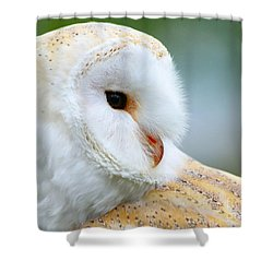 Over Her Shoulder  Shower Curtain