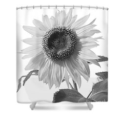 Over Looking The Garden Shower Curtain
