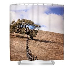 Over The Line Shower Curtain
