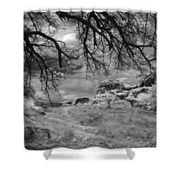 Overhanging Branches Shower Curtain