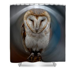 Owl Alba  Spain  Shower Curtain by Colette V Hera  Guggenheim