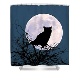 Owl And Blue Moon Shower Curtain