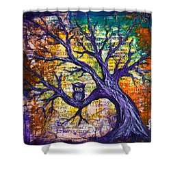 Wisdom Of Gratitude Shower Curtain