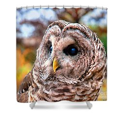 Owl Gaze Shower Curtain