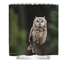 Owl In The Forest Visits Shower Curtain by Tom Janca