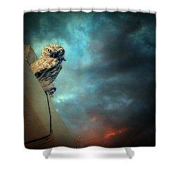 Owl Shower Curtain by Taylan Apukovska