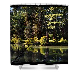 Oxbow Triptych Shower Curtain by Peter Piatt