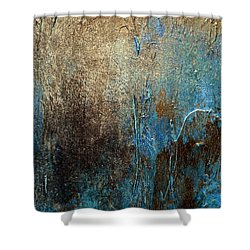 Oxidized 2 Shower Curtain