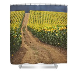 Oz Shower Curtain by Carrie Ann Grippo-Pike