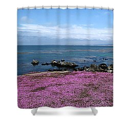 Shower Curtain featuring the photograph Pacific Grove California by Joyce Dickens
