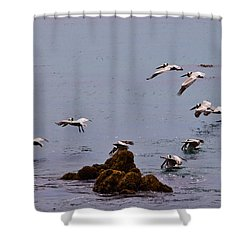 Pacific Landing Shower Curtain