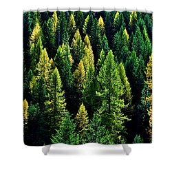 Shower Curtain featuring the photograph Pacific Northwest Autumn by Benjamin Yeager
