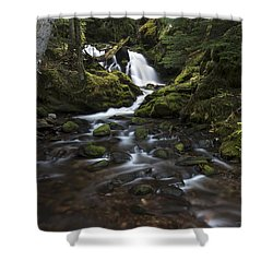 Packer Falls #3 Shower Curtain