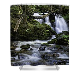 Packer Falls And Creek Shower Curtain