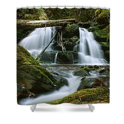 Packer Falls Shower Curtain