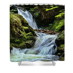 Packer Falls Vert 1 Shower Curtain