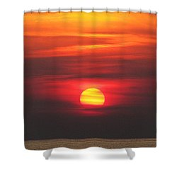 Paddling Under The Sun Shower Curtain by Richard Reeve