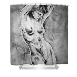 Page 17 Shower Curtain